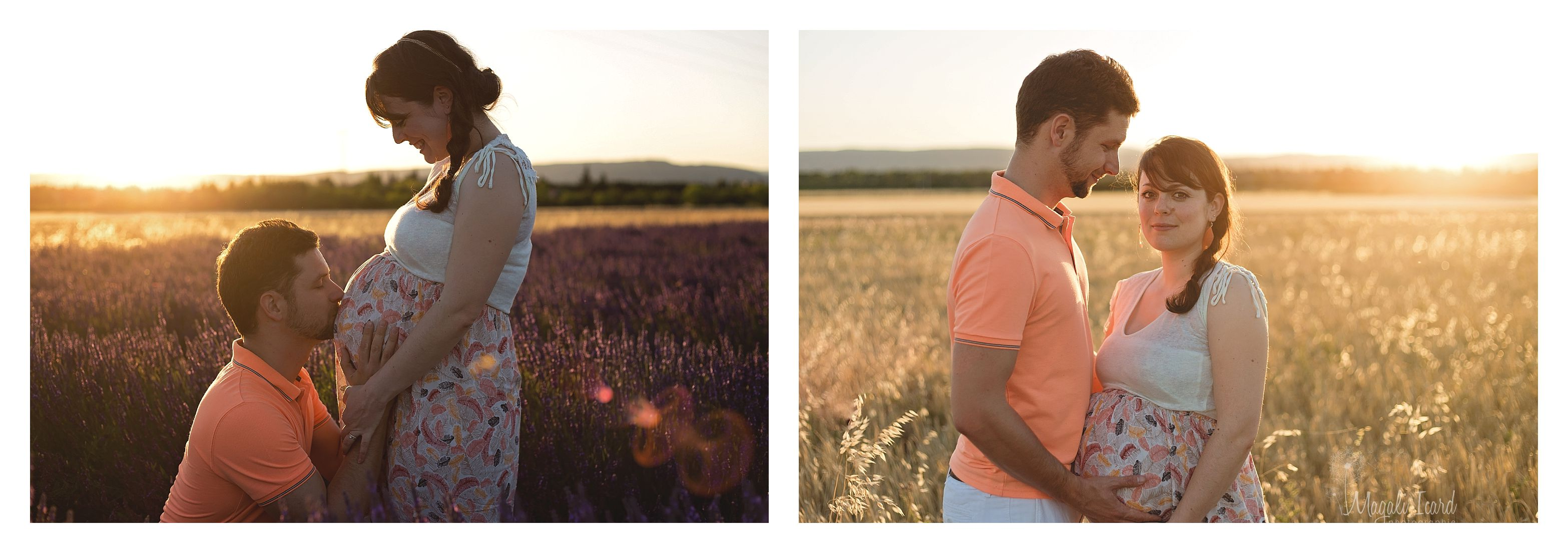 séance photo grossesse champs blé